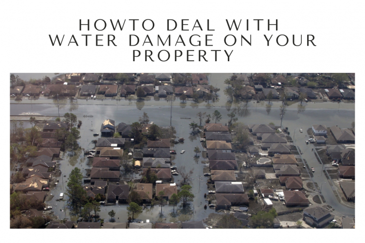 How To Deal With Water Damage On Your Property